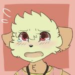 Rose Distressed