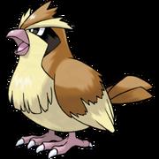 Pokemon Pidgey