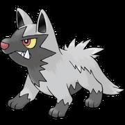 Pokemon Poochyena
