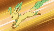 File:Izzy'sLeafeon.png