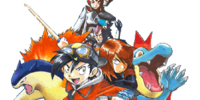 HeartGold & SoulSilver Chapter