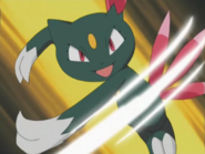 Harrison's Sneasel Fury Swipes