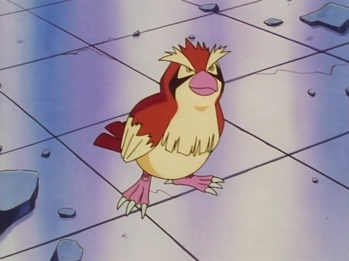 Nurse Joy Pidgey
