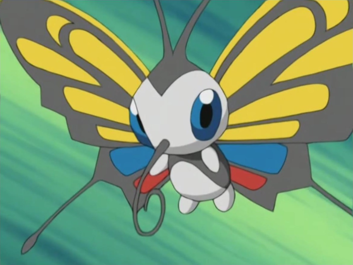 Janet Beautifly