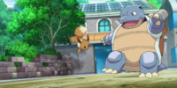 XY090: Tag Team Battle Inspiration!