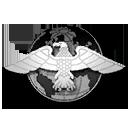 File:Faction USMC Silver.png