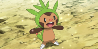 Clemont's Chespin