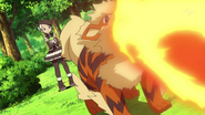 Marley Arcanine Flamethrower