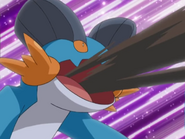 Swampert Mud Shot