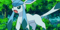 May's Glaceon