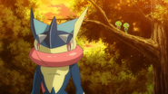 Greninja, Squishy and Z2 in XY140