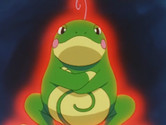 Misty Politoed Swagger