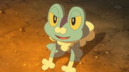 Ash Dream Froakie
