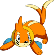 418Buizel DP anime 4