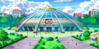 Pokémon World Tournament Junior Cup