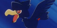 Lily's Murkrow