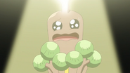 Brock Sudowoodo Fake Tears