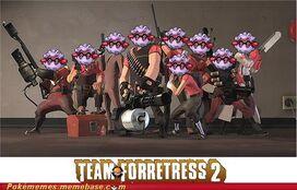 TeamForretress