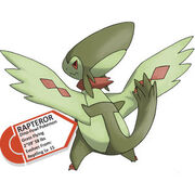 Starter Evolution Rapteror by PokePages