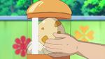 Scraggy Egg