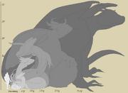 Dragon-sizes