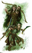 Elves12