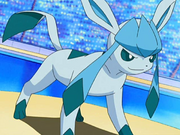 Trainer's Glaceon