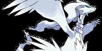 Reshiram (Pokémon)