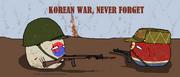 ROK Armyball 6.25