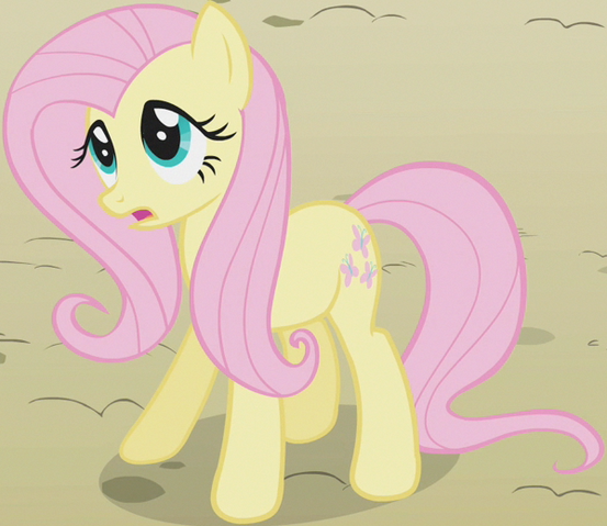 File:Fluttershy Earth pony ID S2E01.png