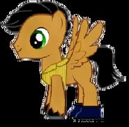 Stepney pony