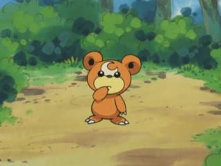 File:Teddiursa anime-1-.png