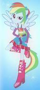 Rainbow Dash's half-pony form