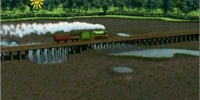 The Fenland Track
