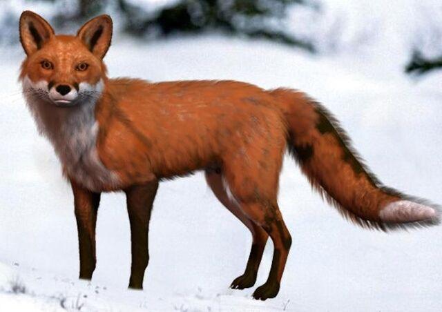 File:Foxpaw (Beast Mode).jpg
