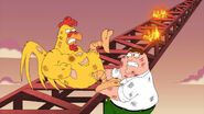 Peter-vs-chicken