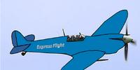 The Express Flight