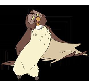 Owl new