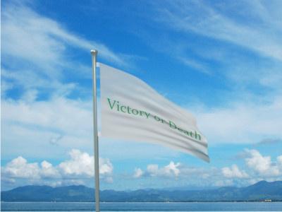 File:Green Mariner Flag.jpg