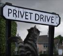 Number Four, Privet Drive