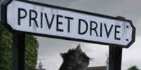 Number Four, Privet Drive