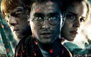 Harry-potter-on-netflix