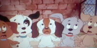 Puppy Quintet