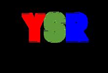 YSR NETWORK logo (no text)