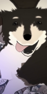 Vol2 Zwei ProfilePic Normal