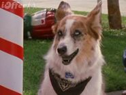 100-deed-for-eddie-mcdowd-complete-series-3d97
