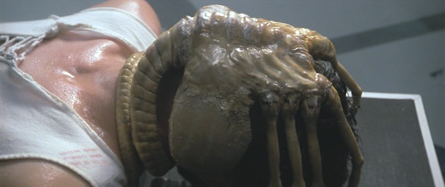 File:Facehugger.png