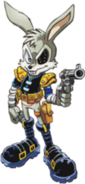 Jack Rabbit 01