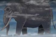 1000 Elephant
