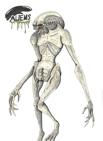 File:Alien newborn by hellraptor-d4rdz96.jpg